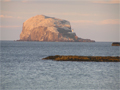 Bass Rock, off the coast from North Berwick and host to the largest colony of Gannets in Scotland.