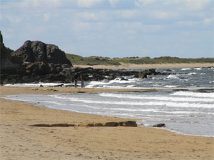 Gullane Beach, where you can walk to Aberlady in one direction or all the way to North Berwick in the other